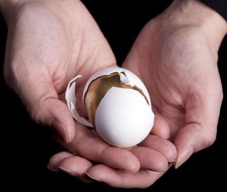 황금 달걀을 들고 손 스톡 콘텐츠