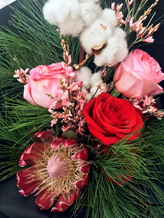 Close-up Beautiful Bouquet. Bouquet of flowers red and pink roses, pink genista, protea, fir branches and cotton ball. Beautiful Winter bouquet of white and blue flowers. Closeup. 版權商用圖片