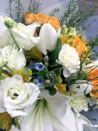 Close-up Beautiful Bouquet. Bouquet of flowers white tulips, white amarilis, yellow roses blue oxypetalum, Capsella bursa-pastoris, yellow Alstroemeria, white carnation.