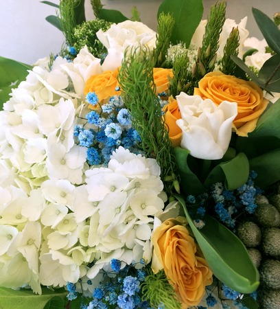 Close-up Beautiful Bouquet. Bouquet of flowers white tulips, white hydrangea, yellow roses blue gypsophila.