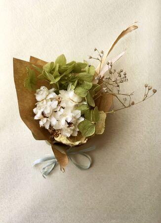 Beautiful dry flower bouquet on white background. Banco de Imagens