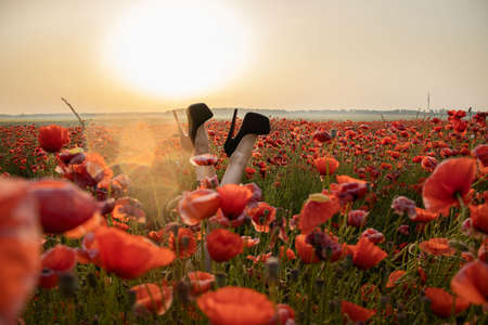 Legs of a girl in high-heeled shoes in a poppy field. Joy and fun concept. Black high-heeled shoes.