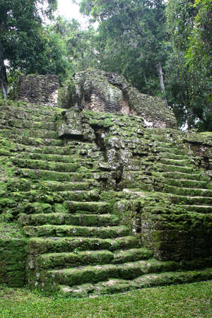 Green antique mayan stair in tropical forest