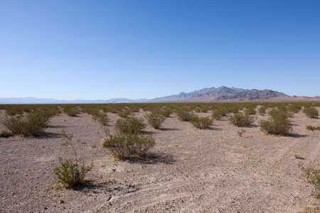 American desert in California over blue sky Stock Photo