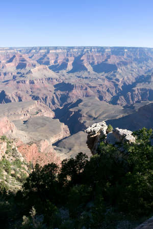 Grand Canyon with green tree over blue sky