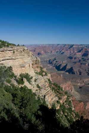View point at the Grand Canyon with green trees