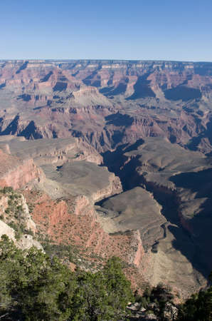 Grand Canyon with green trees and blue sky