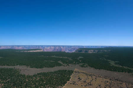 Flight over Grand Canyon with blue sky and green trees
