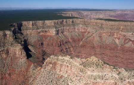 Flight over Grand Canyon with deep ravine and green trees