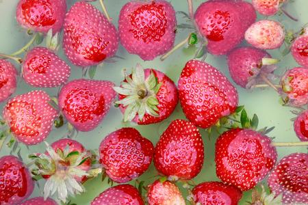 wash strawberry in bowl