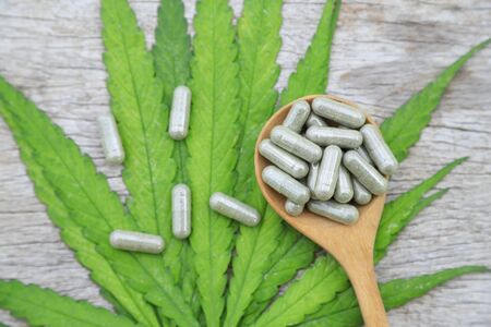 Herbal medicine in capsules from cannabis leaf for healthy eating at home