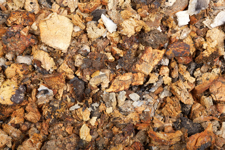 torrid: The ash from coal  Detailed view  Stock Photo