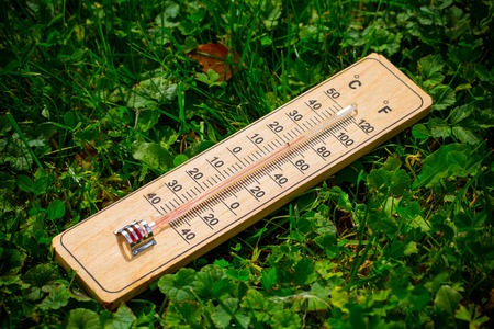 Wooden thermometer in the garden on the grass. Stock Photo