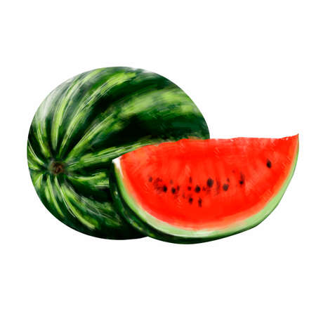 Round green watermelon with a red cut slice on a white background. Vector illustration.