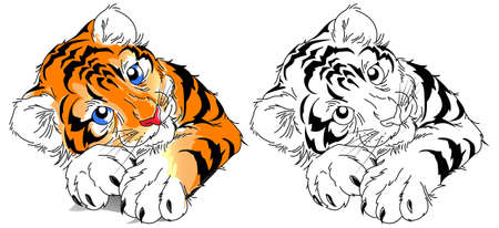 Cute little tiger with blue eyes. Vector illustration for t-shirt, backpack, child's school supplies.