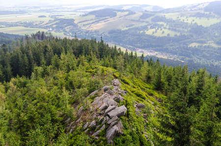 Nature landscape bohemia dolni morava