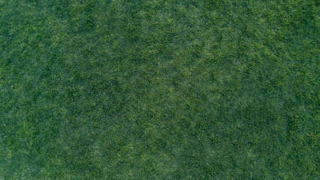 Green Grass Texture Made from 4K drone of real surface on the park Stock Photo