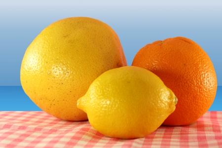 citrus aurantium: citrus fruit