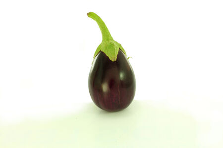 cures:  eggplant lonely in white background