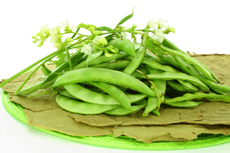 dolichos lablab: valor papdi beans with plant part closeup