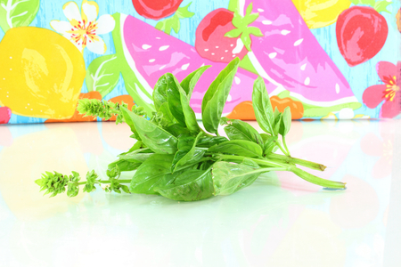 botanical remedy:  basil herb in fruit art background