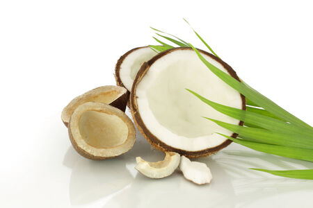 coconut half cut and dried Stock Photo - 23839528
