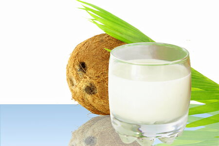coconut milk and coconut photo