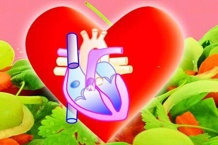 Healthy heart anatomy diaphragm in vegetable background
