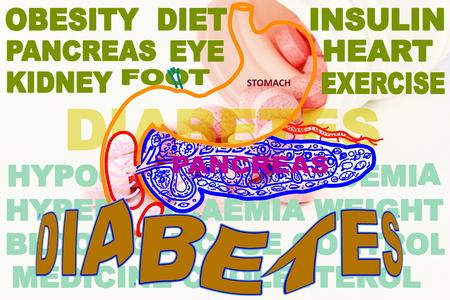 diabetes gerelateerde zoekwoorden icoon met alvleesklier maag en geneeskunde Stockfoto