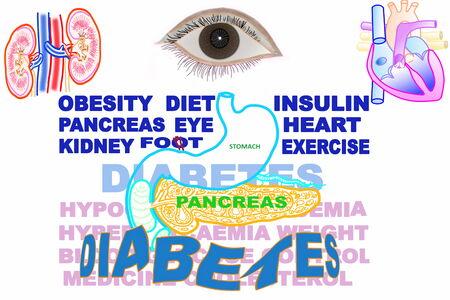 diabetes gerelateerde zoekwoorden pictogram met alvleesklier maag hart oog nieren