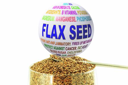 flax seed: flax seed related words globe  with flax seed