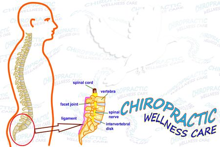 spinal adjustment: Chiropractic wellness care card icon with empty space