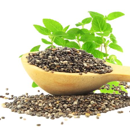 la semilla de chía en cuchara de madera con la planta chia en fondo blanco puro Foto de archivo