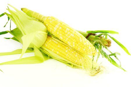 corn ear: mazorca de ma�z de cerca en fondo blanco puro