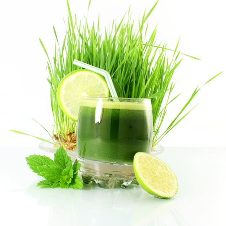 fresh sprouted wheat grass juice with wheat grass in white background Standard-Bild