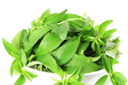 cures: stevia sugar substitute herbs in pure white background