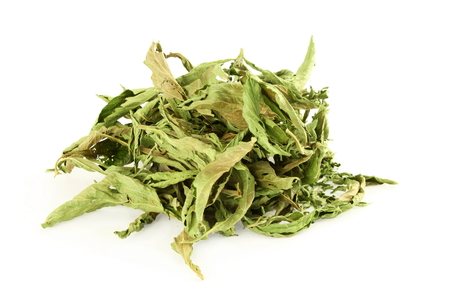 steviol: dried Stevia rebaudiana leaves on white background