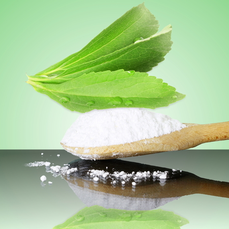 steviol: fresh green Stevia and extract powder on green background
