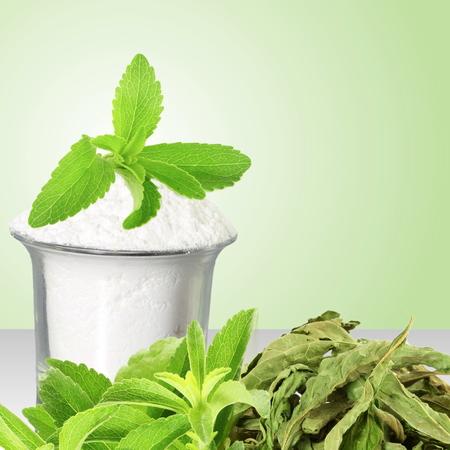jugo verde: fresca polvo verde y seca y extracto de Stevia en fondo verde