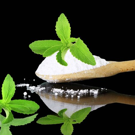 steviol: fresh green  Stevia and extract powder on black background Stock Photo