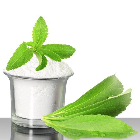 extract: fresh green  Stevia and extract powder on white background