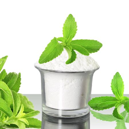 steviol: fresh green Stevia and extract powder on white background