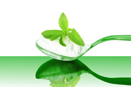 steviol: fresh green Stevia and extract powder in spoon on white background Stock Photo