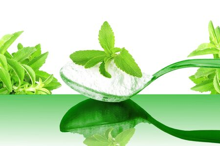 cures: fresh green Stevia and extract powder in spoon on white background Stock Photo