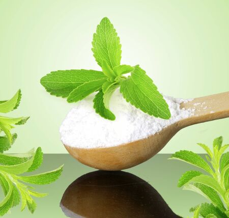 extract: fresh green Stevia and extract powder in wooden spoon