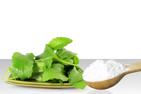steviol: fresh green Stevia and extract powder in wooden spoon on white background Stock Photo