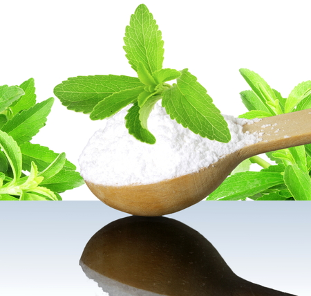steviol: fresh green Stevia herb and extract powder in wooden spoon on white background