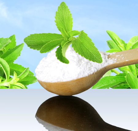 steviol: fresh green Stevia herb and extract powder in wooden spoon on sky background Stock Photo