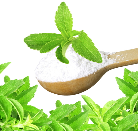 cures: fresh green Stevia herb and extract powder in wooden spoon on white background