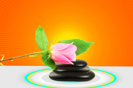 enso: rose on stone and circle religious and meditation yoga zen peace healing related background Stock Photo